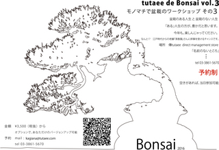 tutaee×Bonsai2016.jpg